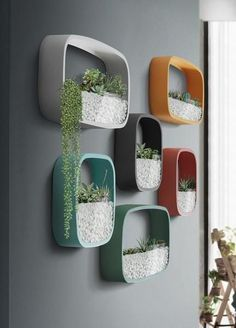 Laundry Room Ideas Discover Modern Circular & Square Set of Planters Nova - Rounded Modern Wall Planters Wall Mounted Planters, Hanging Plants, Indoor Plants, Wall Planters, Indoor Gardening, House Plants Decor, Plant Decor, Vases Decor, Balkon Design