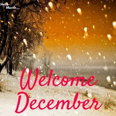 Tulisan Welcome Desember 86