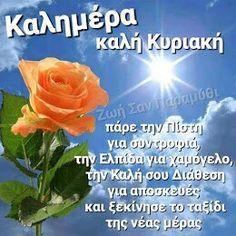 Good Night, Good Morning, Flowers, Beautiful, Art, Nighty Night, Buen Dia, Art Background, Bonjour