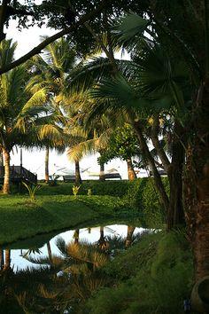 Kerala, Kumarakom Kerala Saree, Kerala India, Kerala Backwaters, States Of India, Hill Station, Honeymoon Destinations, India Travel, Romantic Travel, Incredible India