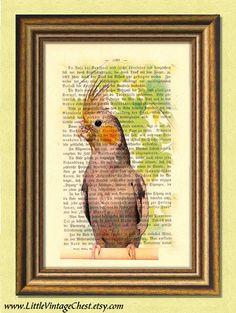 ROBB the COCKATIEL  Parrot   Parakeet  by littlevintagechest, $7.99
