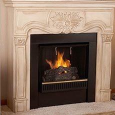 1000 Images About Ideas For The House On Pinterest Natural Gas Fireplace Direct Vent Gas