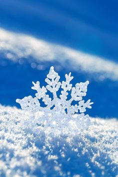 Snowflakes are like people- all a bit different and quirky, but you'll only notice if you look closer.