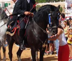 Ciutadella, Sant Joan, horse waiting