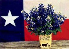 ,Bluebell a Texas staple