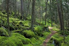 11 Best Hikes in the US « Toad&Co Blog