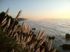 Humboldt County California, Best Western, Westerns, Places To Go, Coast, Sunset, Country, Live, Beach