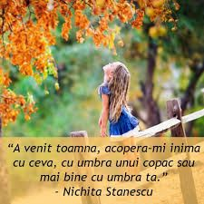 Image result for citate despre toamna Maxime, Travel Quotes, Autumn, Beautiful, Green, Rome, Fall, Fall Season