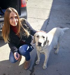 Animal lover 4 life 4 Life, Labrador Retriever, Lifestyle, Dogs, Animals, Labrador Retrievers, Animales, Animaux, Pet Dogs