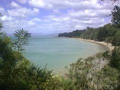 New Zealand: Summer day  Kiwiana, Summer Days, New Zealand, River, Beach, Places, Outdoor, Outdoors, The Beach