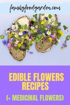 For some original ingredients, Family Food & Garden recommends edible and medicinal flowers. With such a large assortment there are many ways to use these plants. Infuse them into hot water, add them to most anything. FFG has a compiled list that includes several of these beneficial flowers to add to some well-known recipes. Expand your options and you will enjoy another experience of savoring flavors. Read more… #edibleflowers #medicinalflowers #recipeswithflowers Healthy Dessert Recipes, Real Food Recipes, Desserts, Summer Drinks, Fun Drinks, List Of Edible Flowers, Healthy Fruits And Vegetables, Flower Food, Family Meals