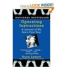 Operating Instructions: A Journal of My Son's First Year.  If foul language and liberals bother you, don't read this book.  I enjoy reading people who don't share all the same opinions I do.