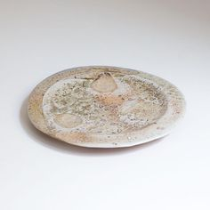 Plate with shino glaze, and seashells decoration. Wood fired anagama pottery by Erik Haugsby Plates And Bowls, Ceramic Plates, Seashells, Safe Food, Firewood, Glaze, Pottery, Ceramics, Decoration