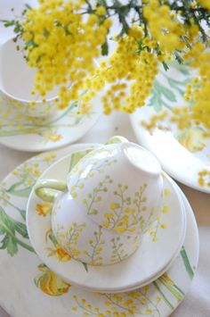 Teacups and Wattle for a stylish morning tea #acacia #mimosa