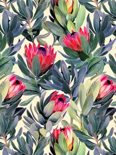 Painted Protea Pattern Art Print by Micklyn Wall Patterns, Textures Patterns, Print Patterns, Motif Floral, Floral Prints, Art Prints, Surface Pattern Design, Pattern Art, Nature Pattern