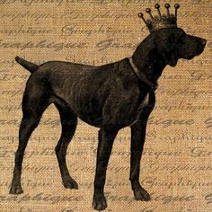 German Shorthaired Pointer Dog Crown Royal Digital by Graphique