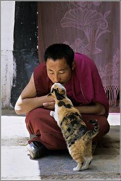 chat embrasant un moine Tibétain  Ramoche-Tempel, Lassa, Tibete