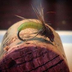 Nymph skin caddis. #flyfishing #flytying #flytyingjunkie #flytyingaddict…