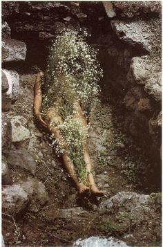 Ana Mendieta -- roots / exile