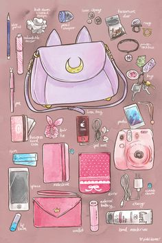 Did a What's in my Bag for an illustration for work. C: