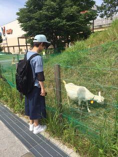 http://ameblo.jp/chibayudai/entry-12031433337.html?frm_src=favoritemail
