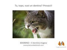 Tu, topo, vuoi un dentino? Provaci! BAMBINO - Il dentino magico www.preciousbabytooth.com #TopolinoDelDentino #Bambino #DentinoMagico