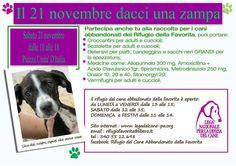 21/11 raccolta di viveri e farmaci per la #LegadelCane di #Palermo Rifugio La Favorita