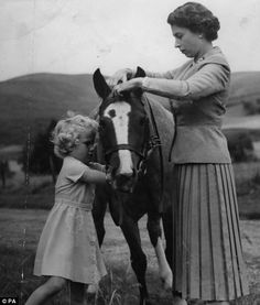 14/09/1955 of Princess Anne helping her mother, Queen Elizabeth II, fit the bridle to the pony 'Greensleeves', the the grounds of Balmoral Castle during the Royal family's summer holiday in Scotland.