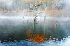 Fall in the mirror | Flickr - Photo Sharing!