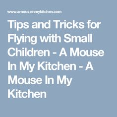 Tips and Tricks for Flying with Small Children - A Mouse In My Kitchen - A Mouse In My Kitchen