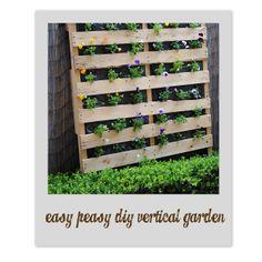 Bubby Makes Three: Build a Vertical Garden!