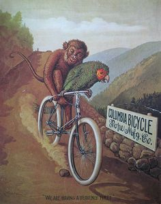 Vintage Bicycle Posters: Columbia Bicycle