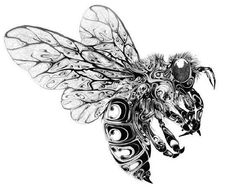 UK-based designer and illustrator Si Scott created these gorgeous illustrations of insects and other wildlife, hand drawn with pen and ink,. Si Scott, Bee Tattoo, Tattoo Life, Surf Tattoo, Dragonfly Drawing, Butterfly Drawing, Bee Drawing, Learn Drawing, Illustrator