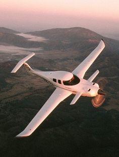 Rutan Catbird