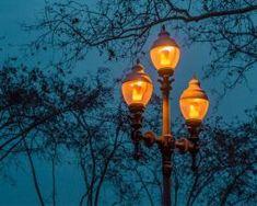 Kolekcia FLAME sú LED žiarovky s naprogramovanými diódami Light Bulb, Led, Lighting, Home Decor, Electric Light, Lights, Interior Design, Home Interiors, Bulb