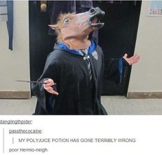 Hilarious images showing Harry Potter fans being incredibly devoted to the fandom.