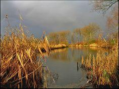 River Linge