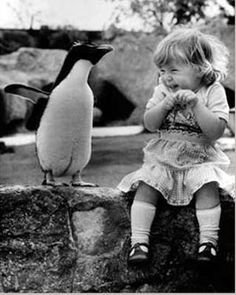 I dont think I have ever seen anything cuter than this... I think the penguin likes her!