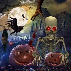 Happy Halloween Gif, Fete Halloween, Halloween Porch Decorations, Halloween Signs, Halloween Cat, Halloween Horror, Old Halloween Photos, Happy Halloween Pictures, Image Halloween