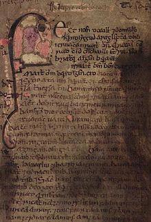 Libro di Leinster - Wikipedia