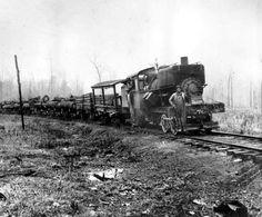 New Mexico Logging Railroads