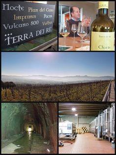 #vinandum2016 #vino #wine #barile #aglianicodelvulture #basilicata