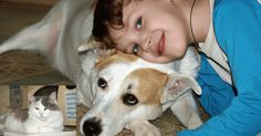 Пугливая кошка и бездомный пёс оказались в нужное время в нужном месте…