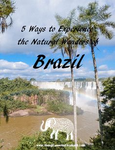 The 5 most beautiful national parks of Brazil • Along Came An Elephant