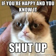 Grumpy Cat  - if you're happy and you know it  shut up