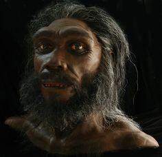 Homo heidelbergensis es una especie extinta del género Homo, que surgió hace más de 600 000 años y perduró al menos hasta hace 200 000 años.Eran individuos altos que tenían 1,80 m de estatura y muy fuertes (llegarían a 105 kg), de grandes cráneos que median 1350 cm³, muy aplanados con relación a los del hombre actual, con mandíbulas salientes y gran abertura nasal. Se trata de la primera especie humana en la que es posible detectar indicios de una mentalidad simbólica.