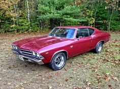 1969 Chevrolet Chevelle SS by Thomas Bergeron - Muscle Car 1969 Chevy Chevelle, Best Muscle Cars, Sexy Cars, Cool Cars, Dream Cars, Classic Cars, Motorcycles, Street Rods, Corvette