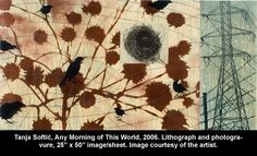 Tanja Softić Any Morning of this World Huntington Museum, Image Sheet, Art Museum, Printmaking, This Or That Questions, World, Planes, Artist, Pictures