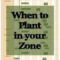 Have you ever wondered when the best time to plant is in your zone? Do you start your seeds indoors or direct seed? Even after having my small garden for one year, I was still questioning myself on when I should be planting and now that I am planting using square foot gardens, I wanted …