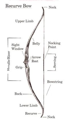 I love recurve bows I find they shoot more easily and have better aim (and they're beautiful ;) )
